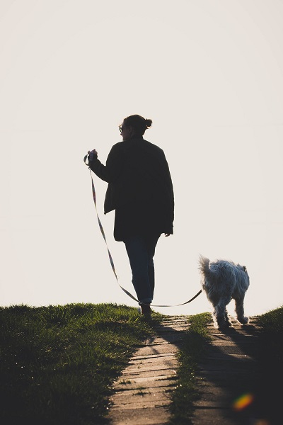 Photo by Dariusz Grosa from Pexels. Walking your dog is a great way to burn calories.