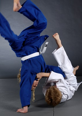 Martial arts judo training.