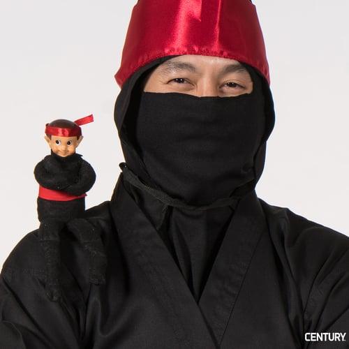 Nigel the Ninja