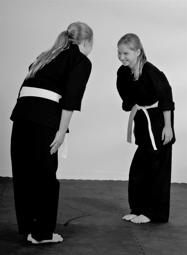 Respect is one of the main values taught in martial arts, where it is often shown with a bow.