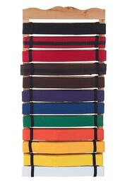 The Wall Mounted Belt Holder from Century Martial Arts.