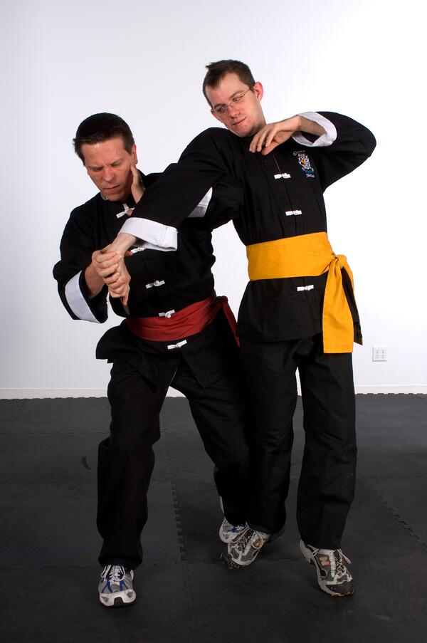 Kung fu teaches perseverance through learning techniques.