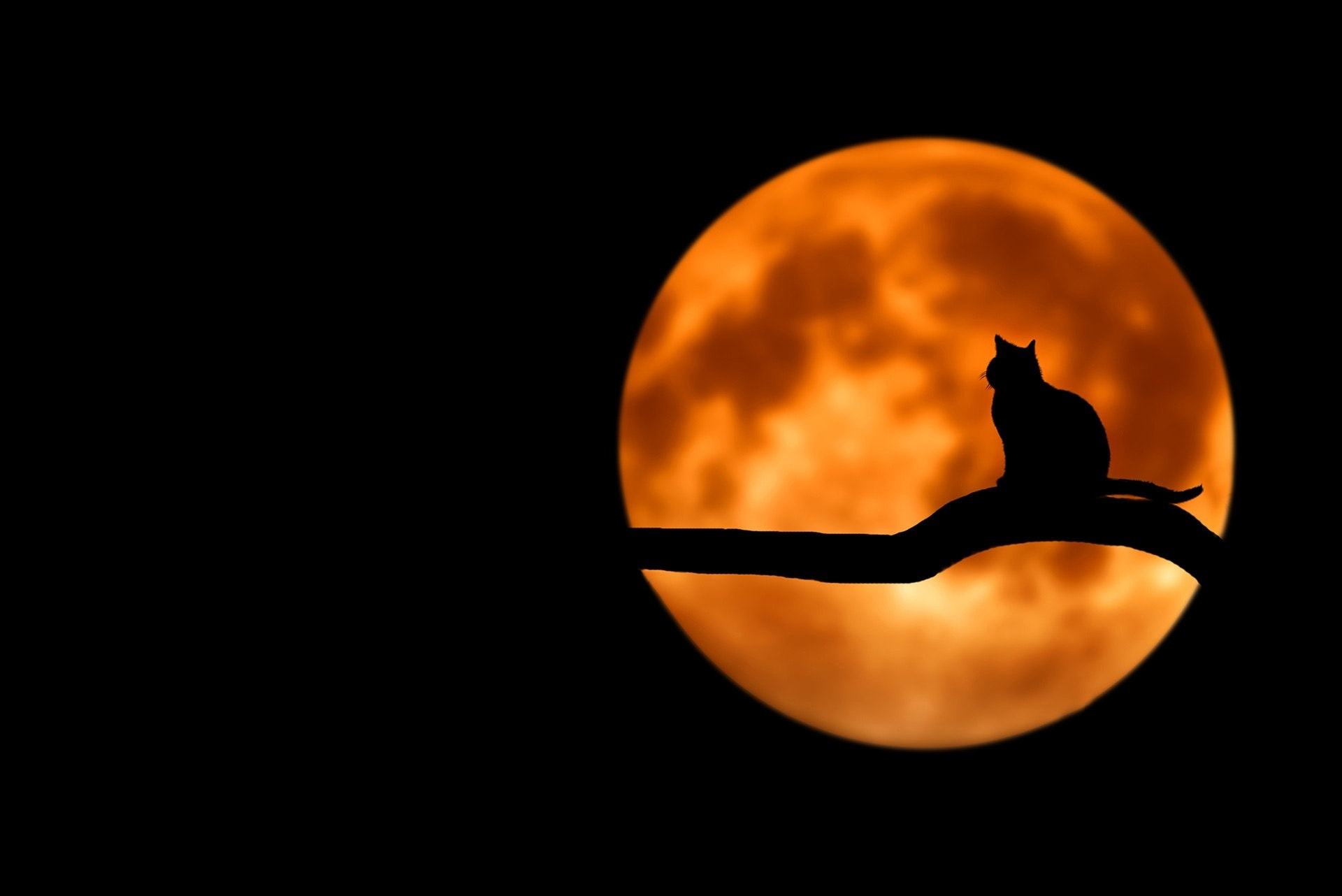 Superstitions are a big part of human culture, and martial arts.